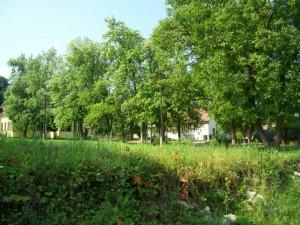 alacska szivarvany,2010.06.03.014